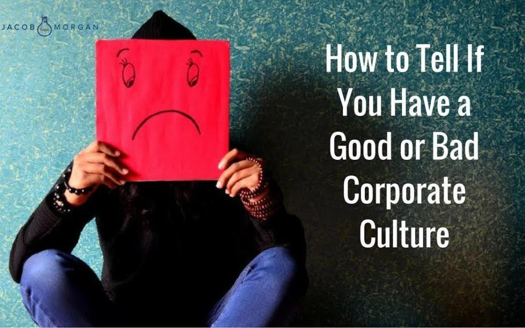 Company Culture Warning Signs